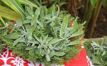hawaiian wreath christmas