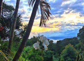 Maui home view