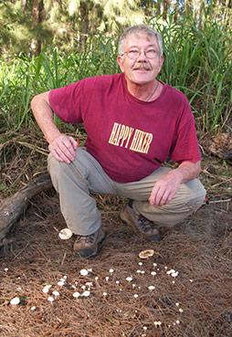 maui mushroom hunting