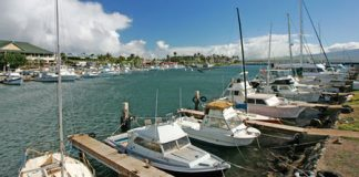 maui small boat harbors