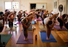 Maui yoga festival