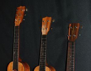 maui ukulele lessons