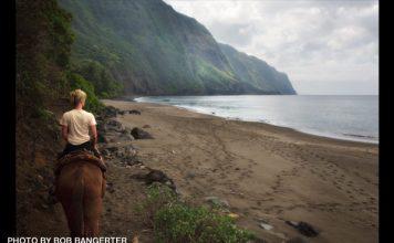 Molokai mule ride