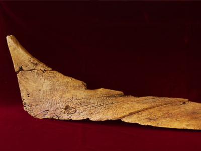 ancient canoe piece