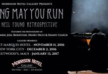 neil young retrospective