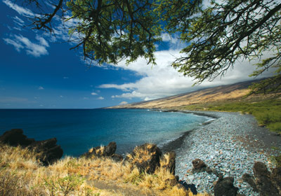nuu-bay-maui-hawaii-coastal-land-trust