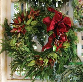 protea wreath maui