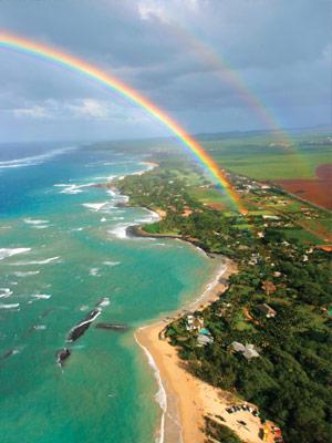 hawaii rainbows