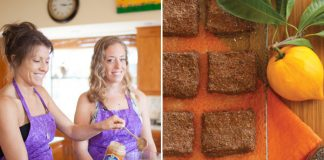 raw brownies by Choice Health Bar in Maui