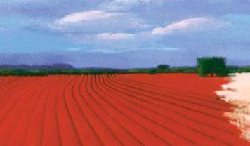 Andrea Razzauti landscape