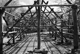 building hale