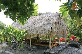 Hawaiian thatch roof home