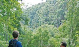 maui bike trails