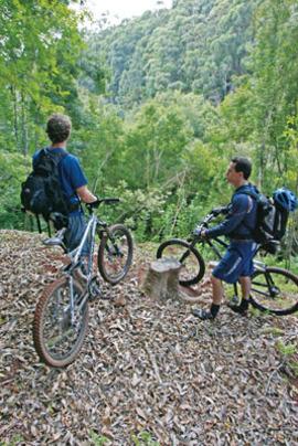 trails-maui