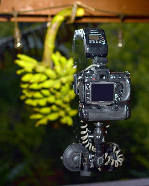 Zane Mathias camera setup